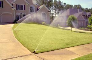 these sprinklers were calibrated by our Galveston irrigation repair techs